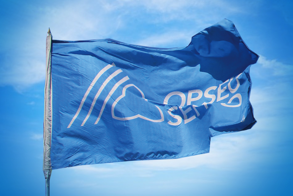 Laura Bulmer named PSW Researcher/Advocate at OPSEU Head Office