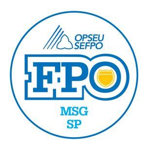 French round MSG-CS logo