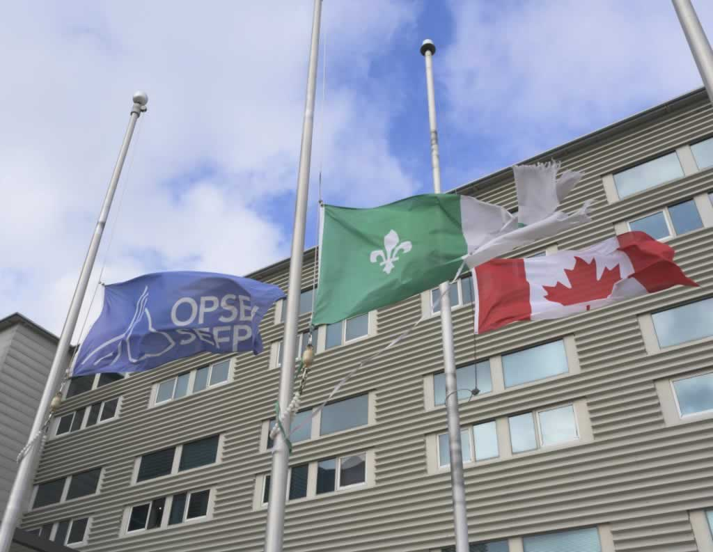 Statement on the deaths of two OPSEU members