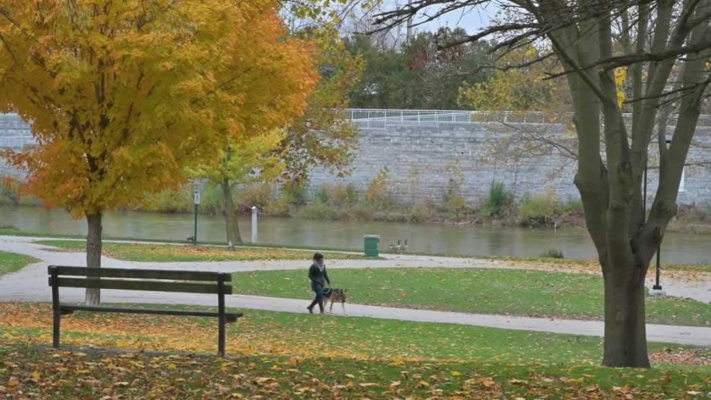 Lady walking her dog